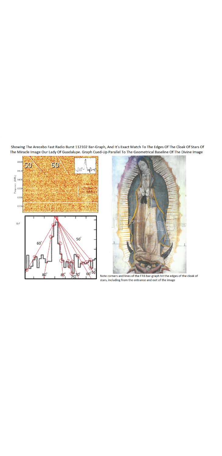 holy mary arecibo graph post